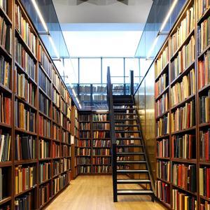 Библиотеки Менделеевска