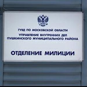 Отделения полиции Менделеевска